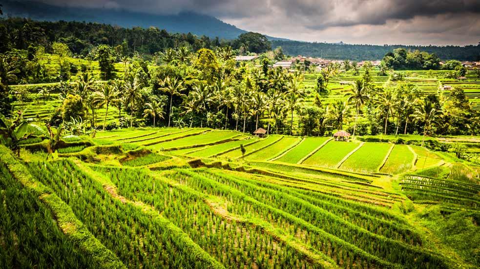 Ako Cestovať Na Bali
