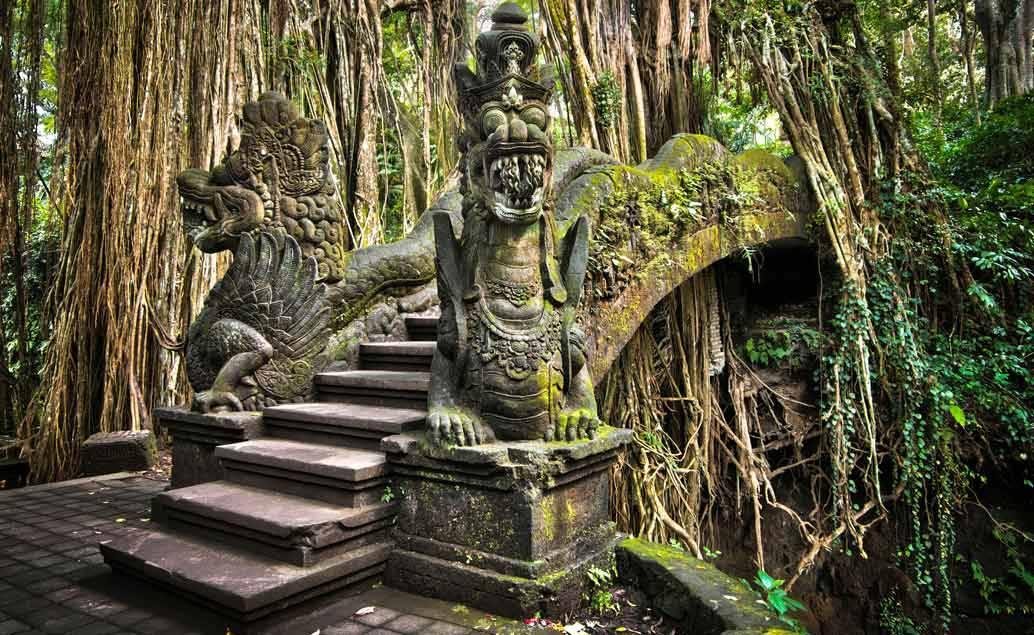 Bali MMA a Fitness kemp